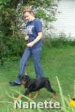 Nanette, a 20 week old Rottweiler puppy, showing her   obedience skills.
